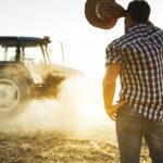 Ein junger Bauer blickt gegen die Sonne in Richtung seines Traktors
