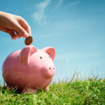Ein Sparschwein steht auf einer Wiese und es wird eine Münze eingeworfen