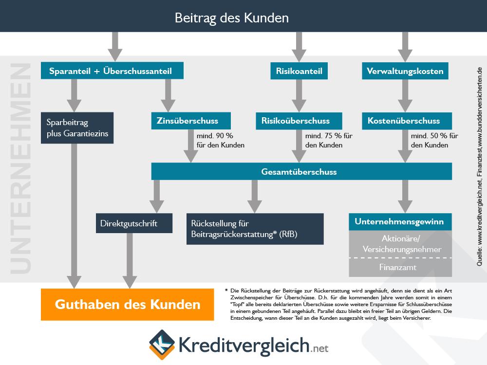 Infografik zur Verwendung der Lebensversicherungsbeiträge